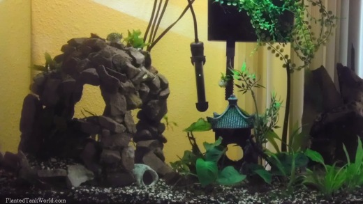 Full shot of my old GSP tank. One of my first aquariums from a long time ago...